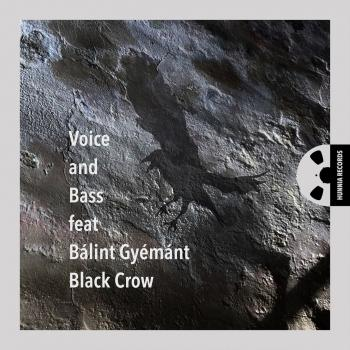 Cover Black Crow