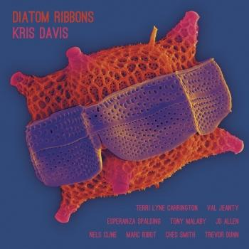 Cover Diatom Ribbons