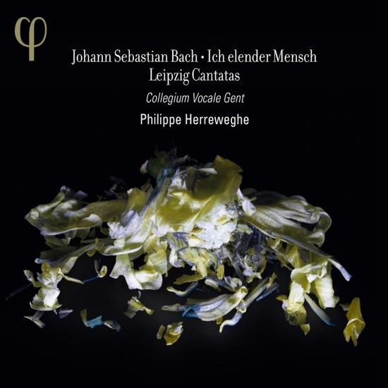 Cover Bach: Ich elender Mensch and Leipzig Cantatas