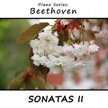 Cover Piano Series Beethoven Sonatas 2