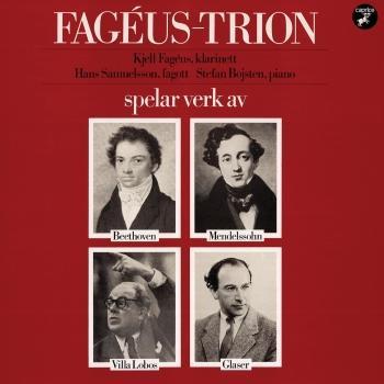 Cover Mendelssohn, Glaser, Beethoven & Villa-Lobos: Chamber Music
