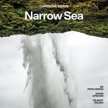 Cover Caroline Shaw: Narrow Sea