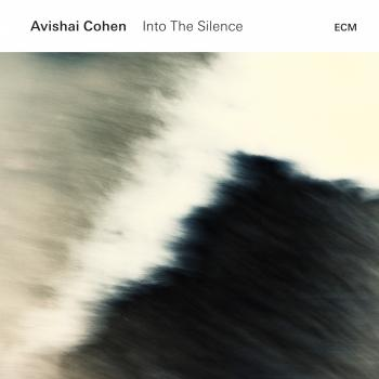 Cover Into the Silence