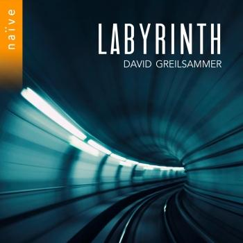 Cover Labyrinth