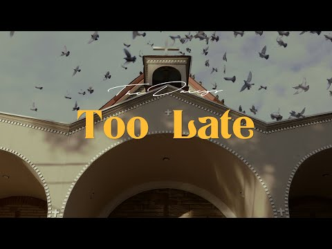 Video The Darcys - Too Late - Visualizer