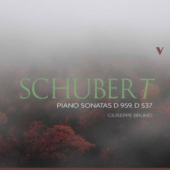 Cover Schubert: Piano Sonatas, D. 959 & D. 537