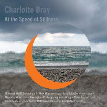 Cover Bray: At the Speed of Stillness