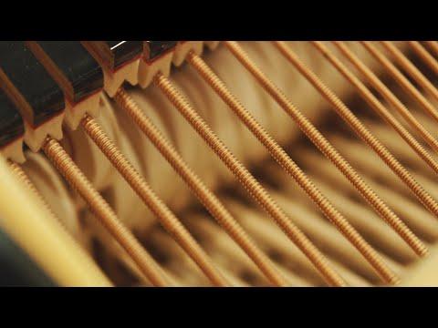Video Sebastian Mullaert with musicians of the Tonhalle Orchester Zürich - 'Natthall'