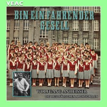 Cover Bin ein fahrender Gesell (Remastered)