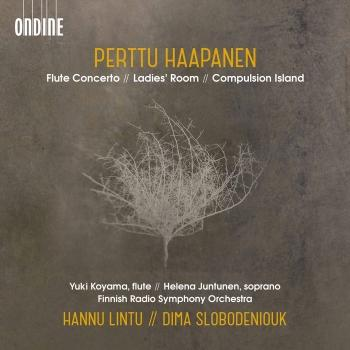 Cover Perttu Haapanen: Flute Concerto, Ladies' Room & Compulsion Island