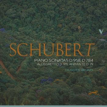 Cover Schubert: Piano Sonatas D. 958, D. 784 & Other Works