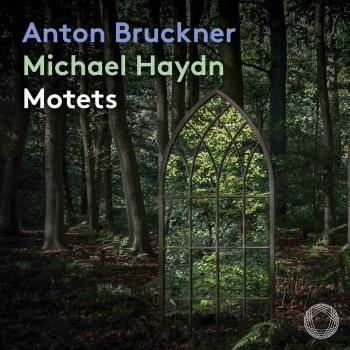 Cover Anton Bruckner & Michael Haydn: Motets
