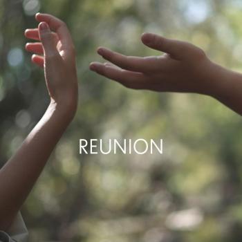 Cover Reunion