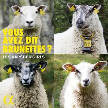 Cover Vous avez dit Brunettes ?