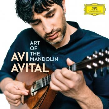 Cover Art of the Mandolin