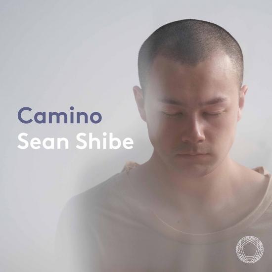 Cover Camino