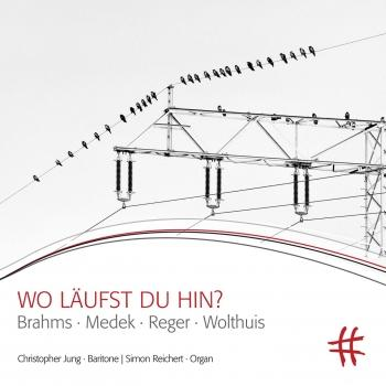 Cover Wo läufst du hin?: Brahms, Medek, Reger & Wolthuis