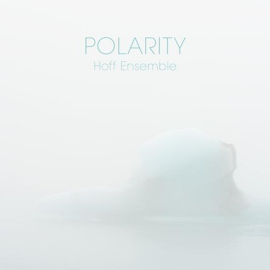 Cover POLARITY - an acoustic jazz project
