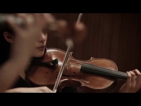 Video Antonio Vivaldi 'The Four Seasons' by The Quartet Four Seasons (4K Music-Video)