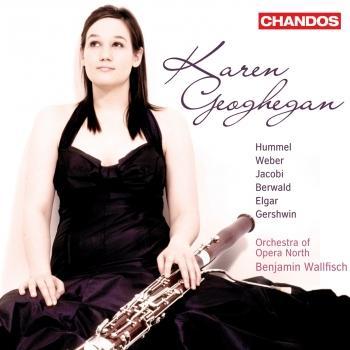 Cover Bassoon Concertos