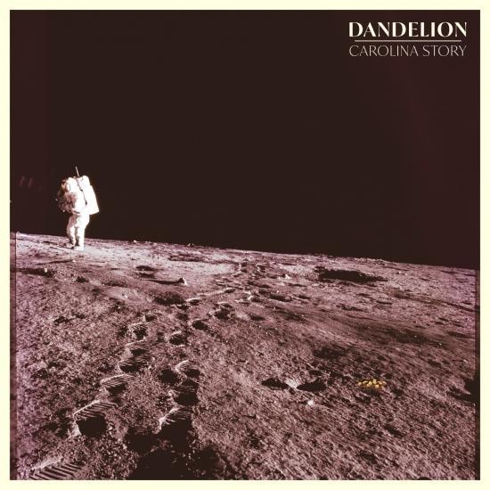 Cover Dandelion
