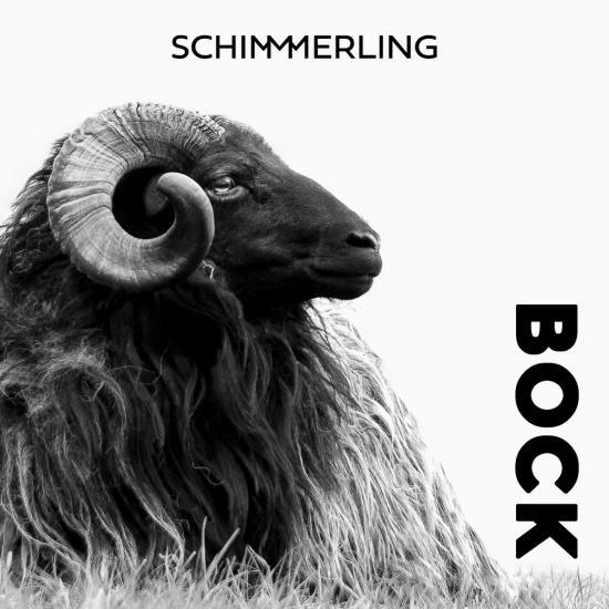 Cover Bock