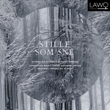 Cover Stille som sne